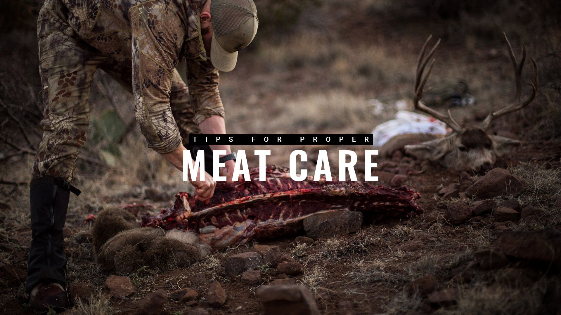 How To Properly Care For Your Meat In The Field