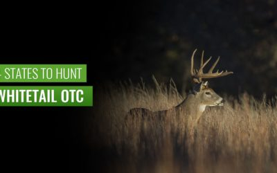 4 Must-Try States to Hunt Whitetail OTC