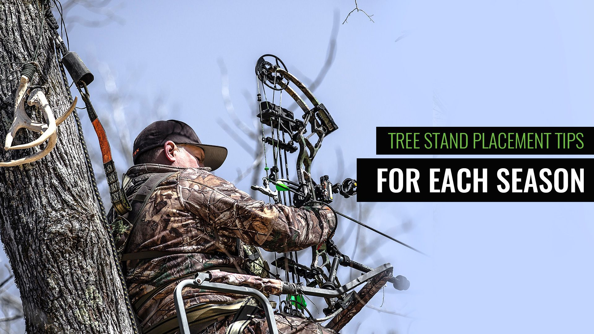 Tips For Early, Mid, & Late Season Tree Stand Placement