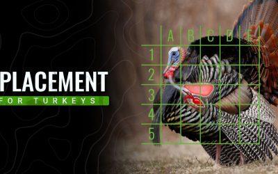 Turkey Anatomy & Shot Placement 101