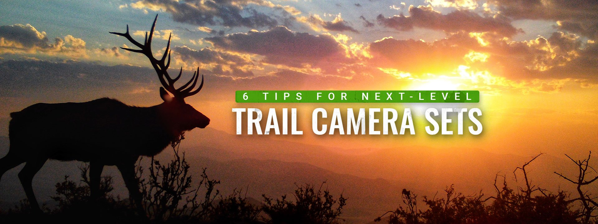 How To Get Next-Level Trail Camera Content