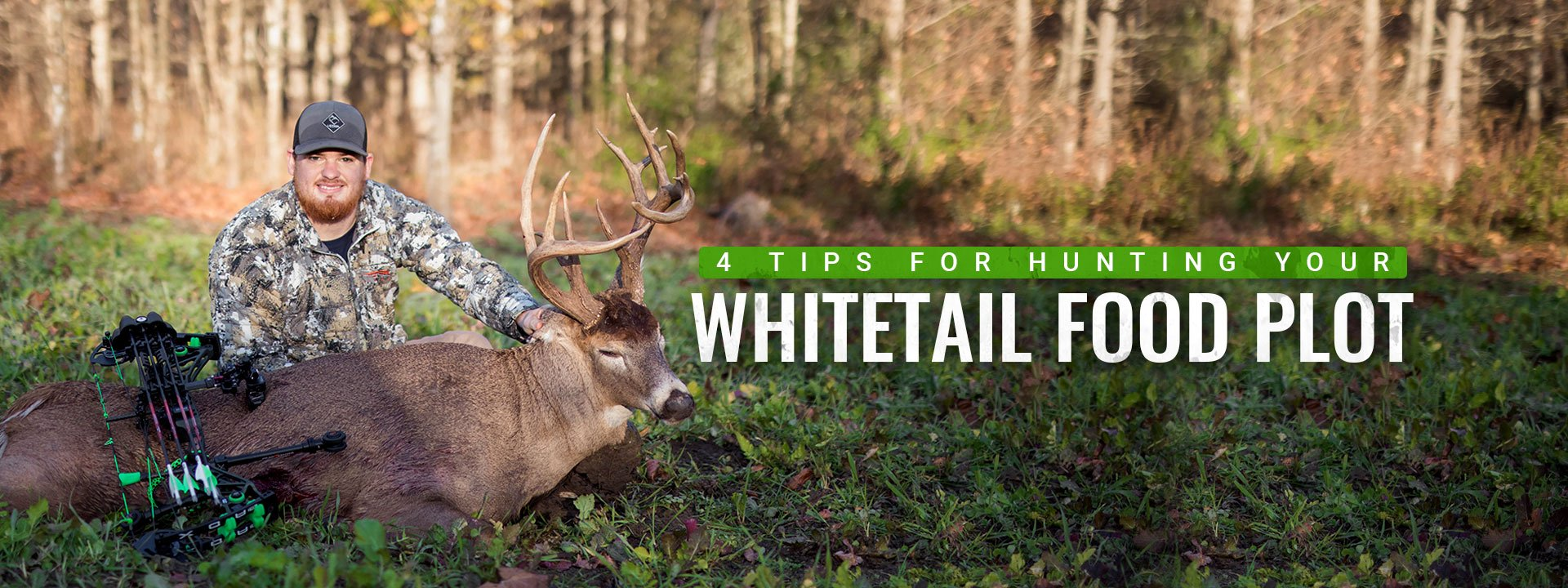 Hunting Your Whitetail Food Plot